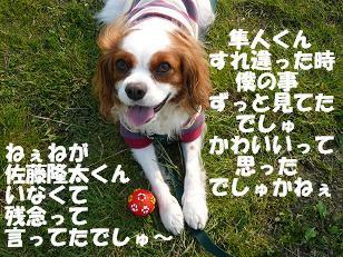 多摩川7.JPG