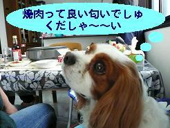 焼肉4.JPG