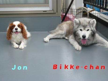 Bikke & Jon.JPG
